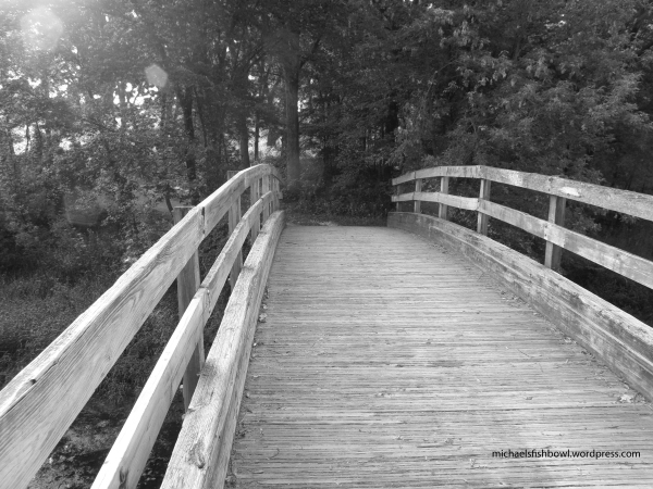 Walkbridge at Big Willow Park