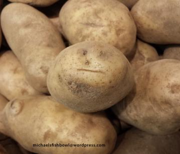Potato Face 1