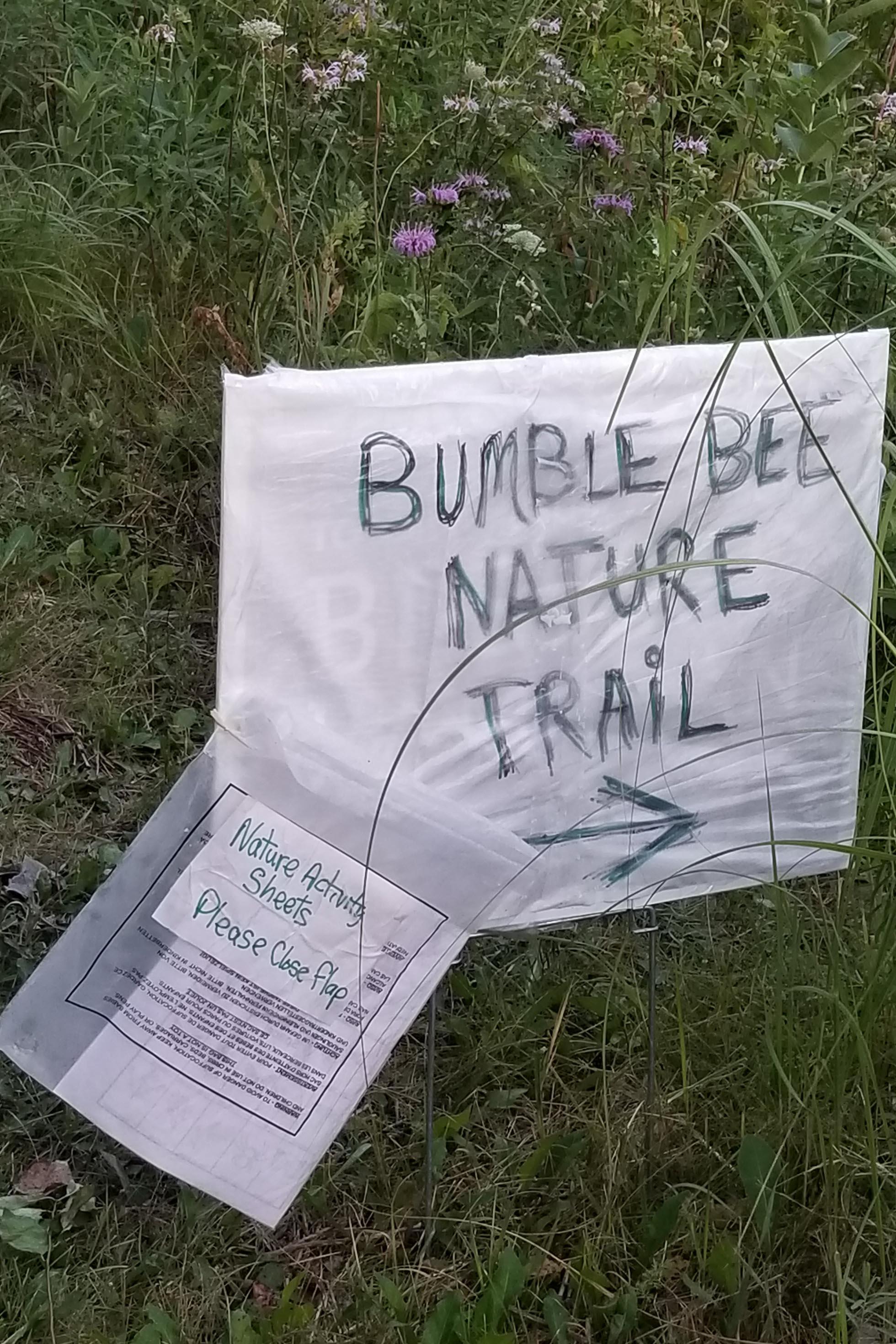 Bumblebee trail